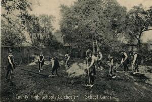 CCHS pupil garden