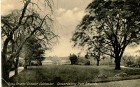 GF arboretum distance plus trees